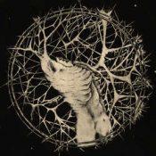 """WOUND: kündigen zweites Album """"Engrained"""" an"""