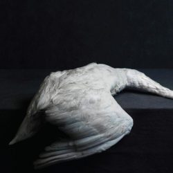 amenra mass-vi CD Cover