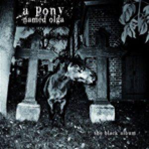 "A PONY NAMED OLGA: ""The Black Album"" kommt im Frühjahr"