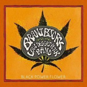 "BRANT BJÖRK: Song von ""Black Power Flower"" online"