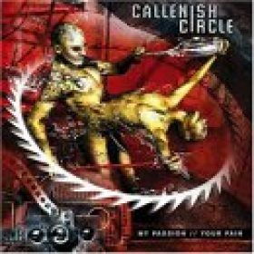 CALLENISH CIRCLE: My Passion // Your Pain