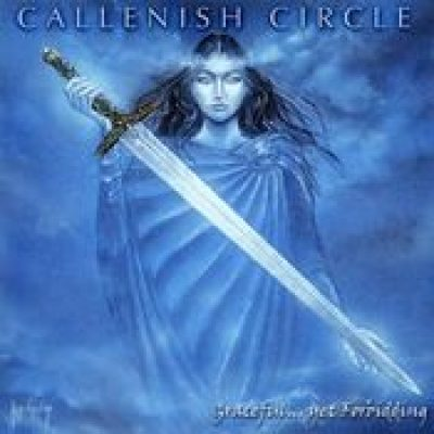 CALLENISH CIRCLE: Graceful…Yet Forbidding