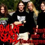 DAWN OF DISEASE: Tratsch aus dem Underground