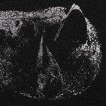 demon-head-viscera-album-cover