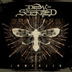 DEW-SCENTED & ANGELUS APATRIDA: Split-Single zur Tour
