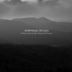 """DOWNFALL OF GAIA: neues Album """"Suffocating In The Swarm Of Cranes"""" online hören"""