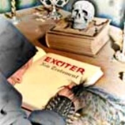 EXCITER: New Testament