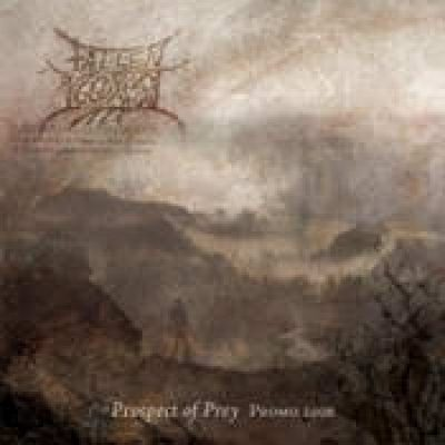 FALLEN YGGDRASIL: Prospect Of Prey – Promo 2006 [Eigenproduktion]