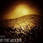 IN THE WOODS…: Omnio