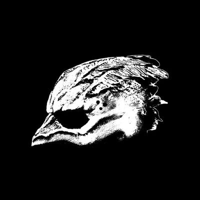 legend-of-the-seagullmen-cover