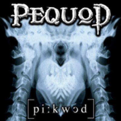 PEQUOD: Pequod
