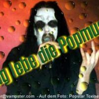 Lang lebe die Popmusik!