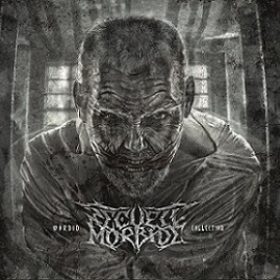 "RECUEIL MORBIDE: streamen ""Morbid Collection""-Album"