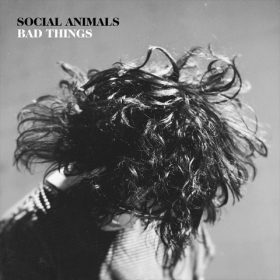 SOCIAL ANIMALS: neue  Wave-Indie-Pop-Band bei bei Rise Records