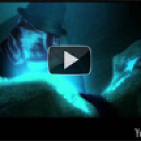 TESSERACT: Video zu ´Eden´