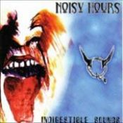 V.A.: Noisy Hours – Indigestible Sounds